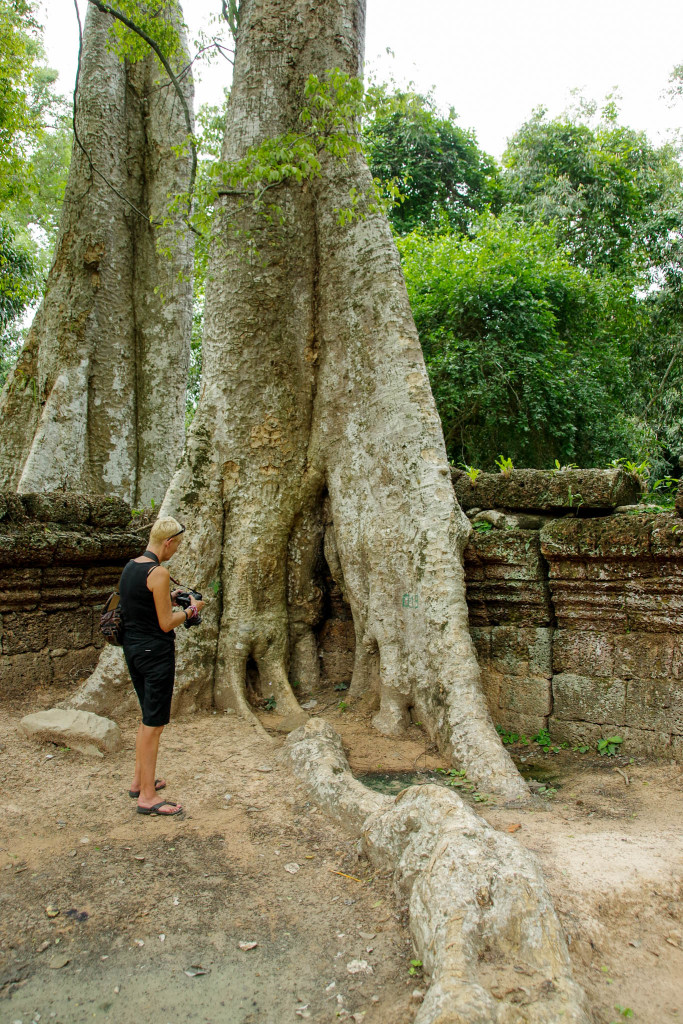 July 17, 2015for blog-Ta Prohm Temple_IMG2030_