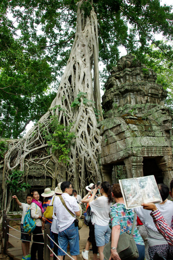July 17, 2015for blog-Ta Prohm Temple_IMG2059_